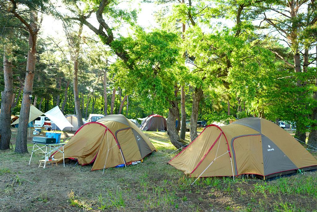 アメニティドームでキャンプ