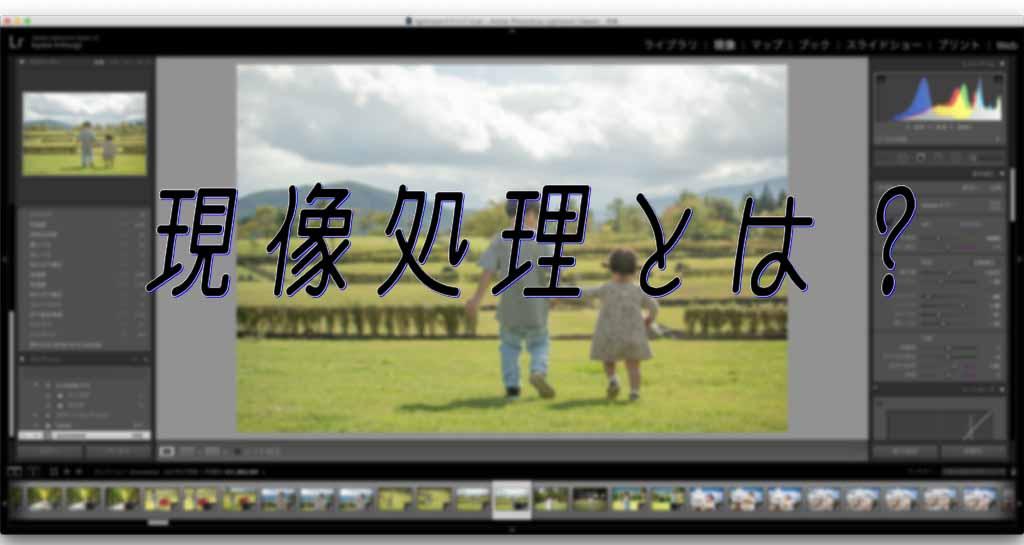 【パパカメラ】デジタル画像の現像処理とは?初心者こそRAWデータ