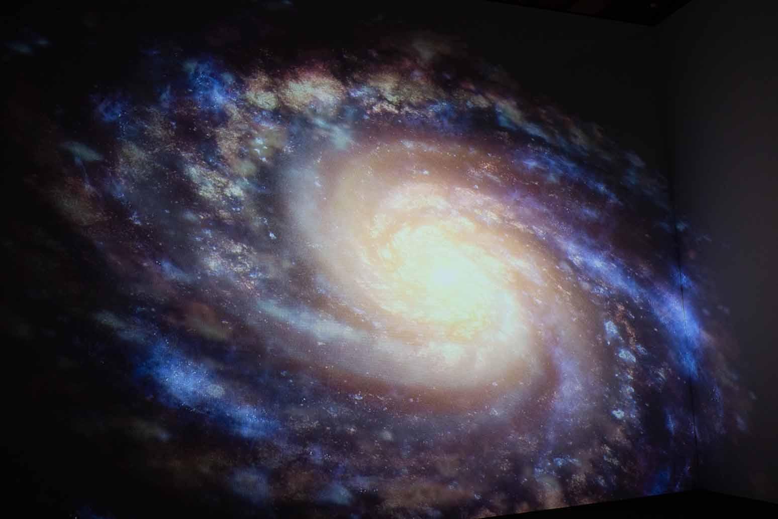 【パパカメラ】毎年開催⁉︎天文台まつりは子どもにオススメ!